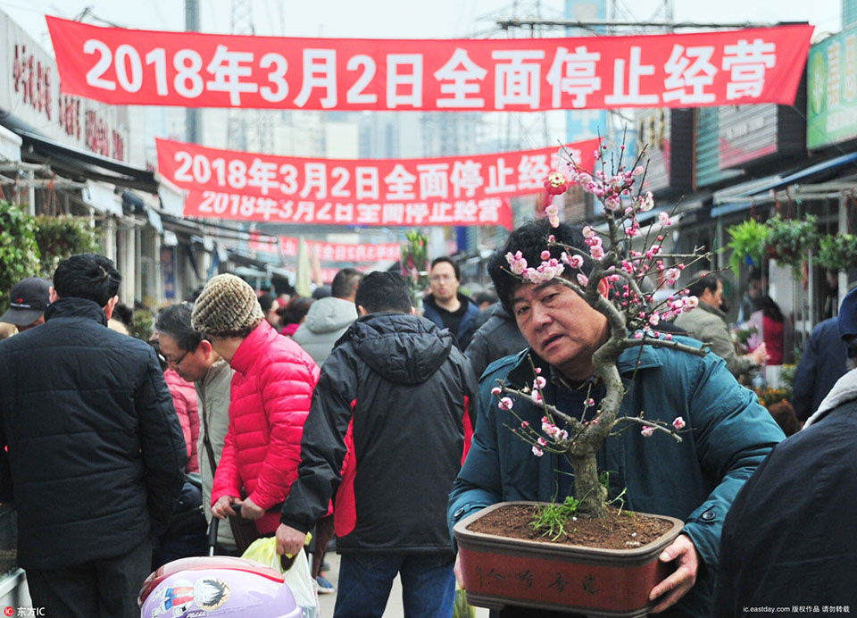 Citizens snap up in flower market