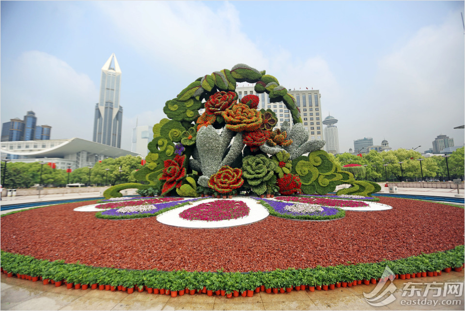 Largest flower feature in town blooms into life