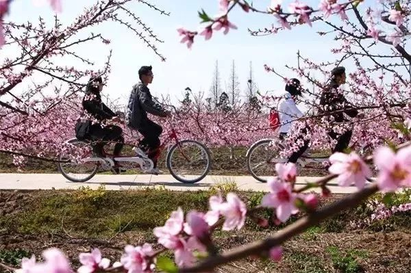 Best places to check out during Qingming